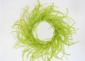 Twister Grass Wreath