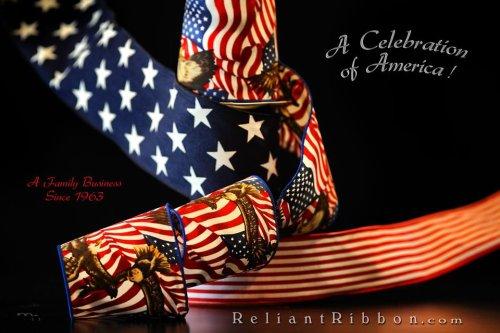 488120_392203250836554_759759152_n patriotic ribbon