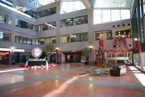 Show Me Decorating, Security Bank atrium, Multi colored Christmas Tree theme